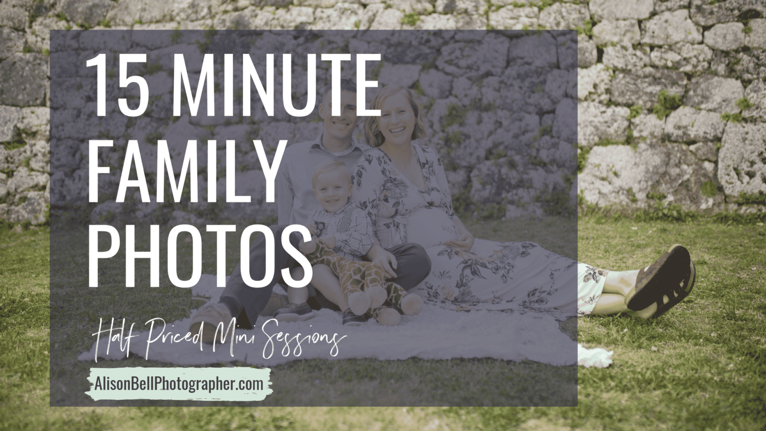 Half Priced Mini sessions for family, kids, toddlers, infants, one year old, maternity by Alison Bell, photographer.