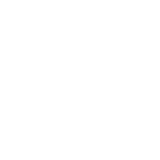 Alison Bell, Photographer