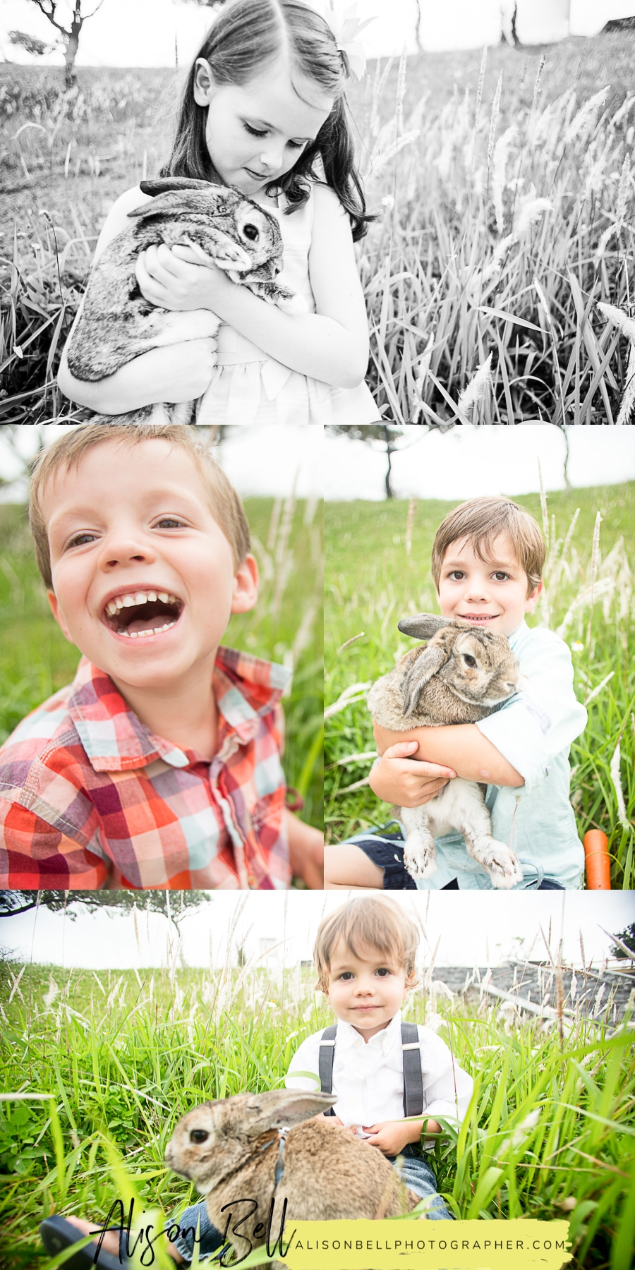 Mini session photography with a live bunny for easter by Alison Bell Photographer