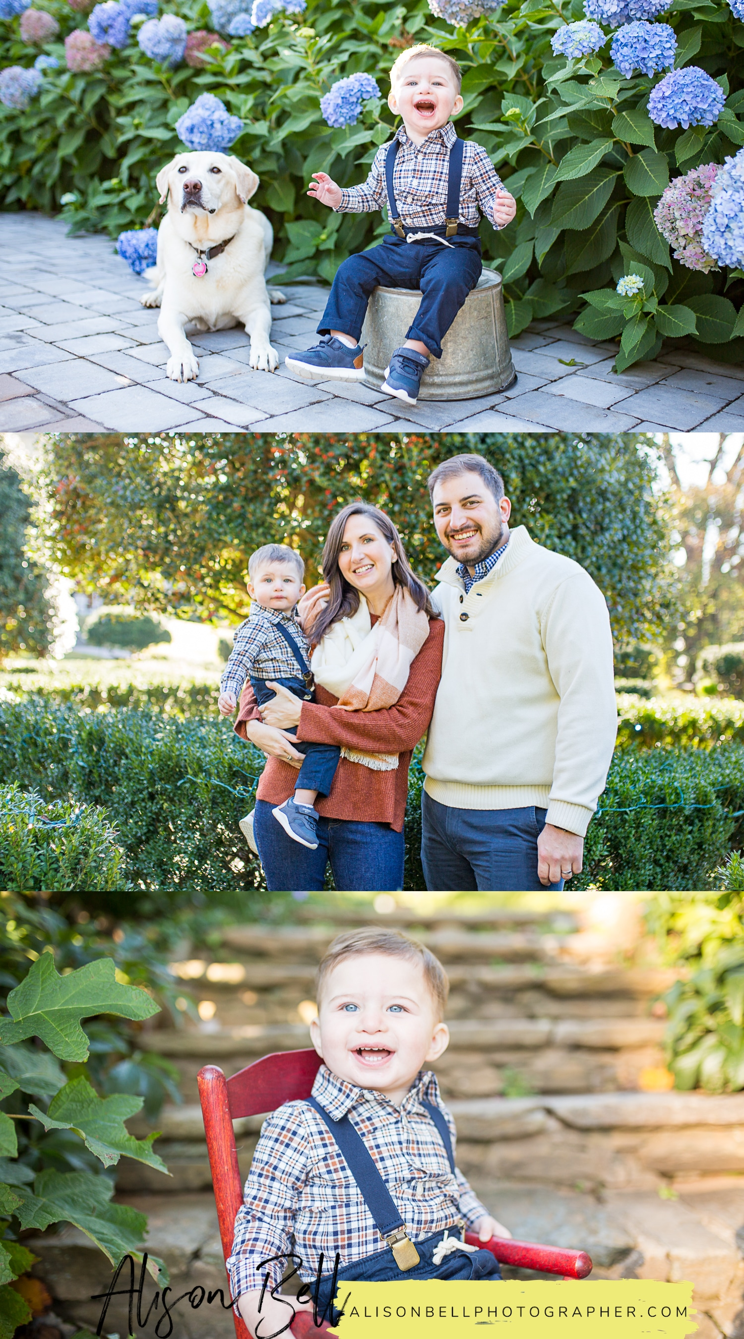 Baby's one year photo session, first birthday family photography session in Northern Virginia by Alison Bell, Photographer. alisonbellphotographer.com