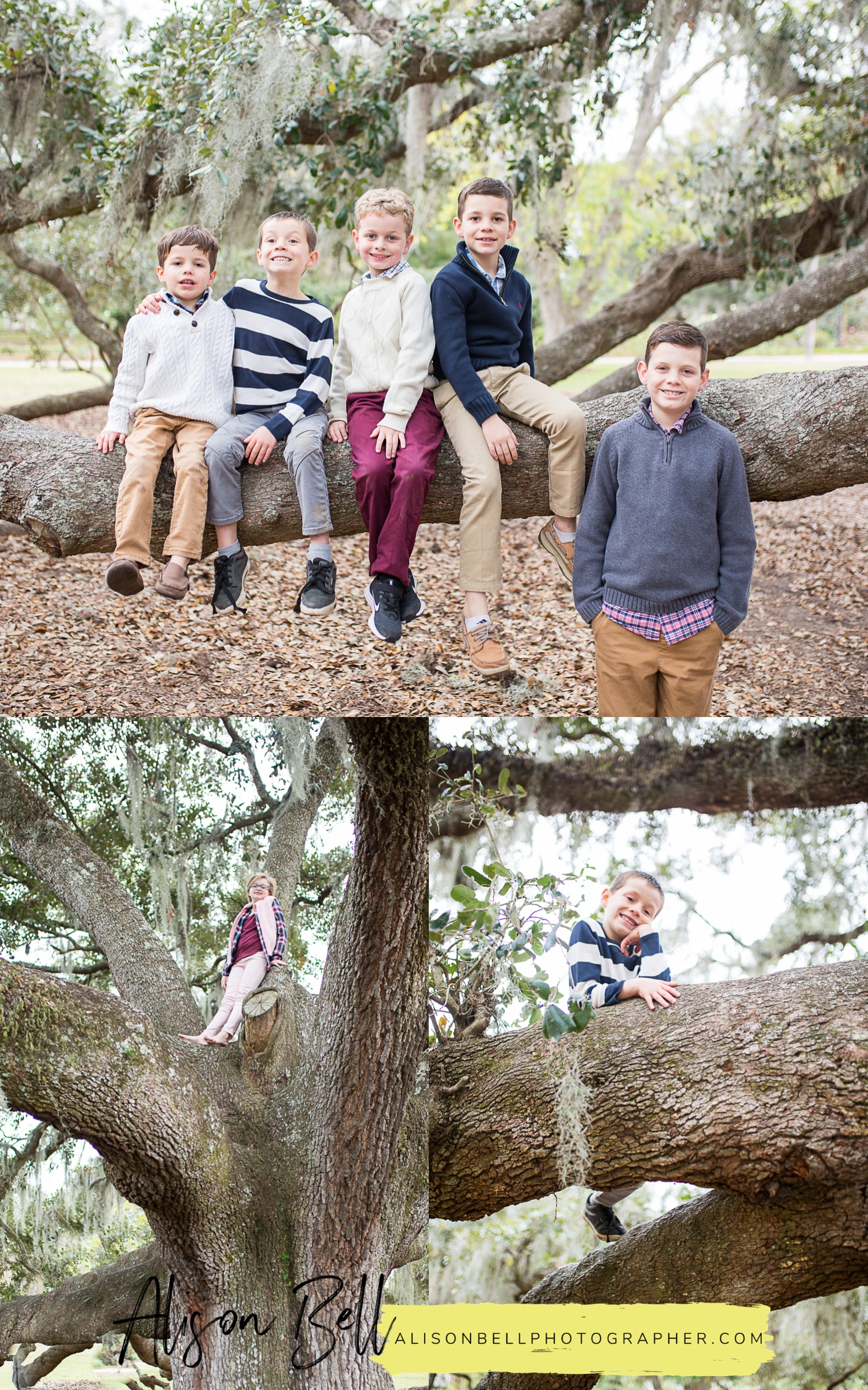 Extended family photography session in Hampton Park, Charleston South Carolina by Alison Bell, Photographer