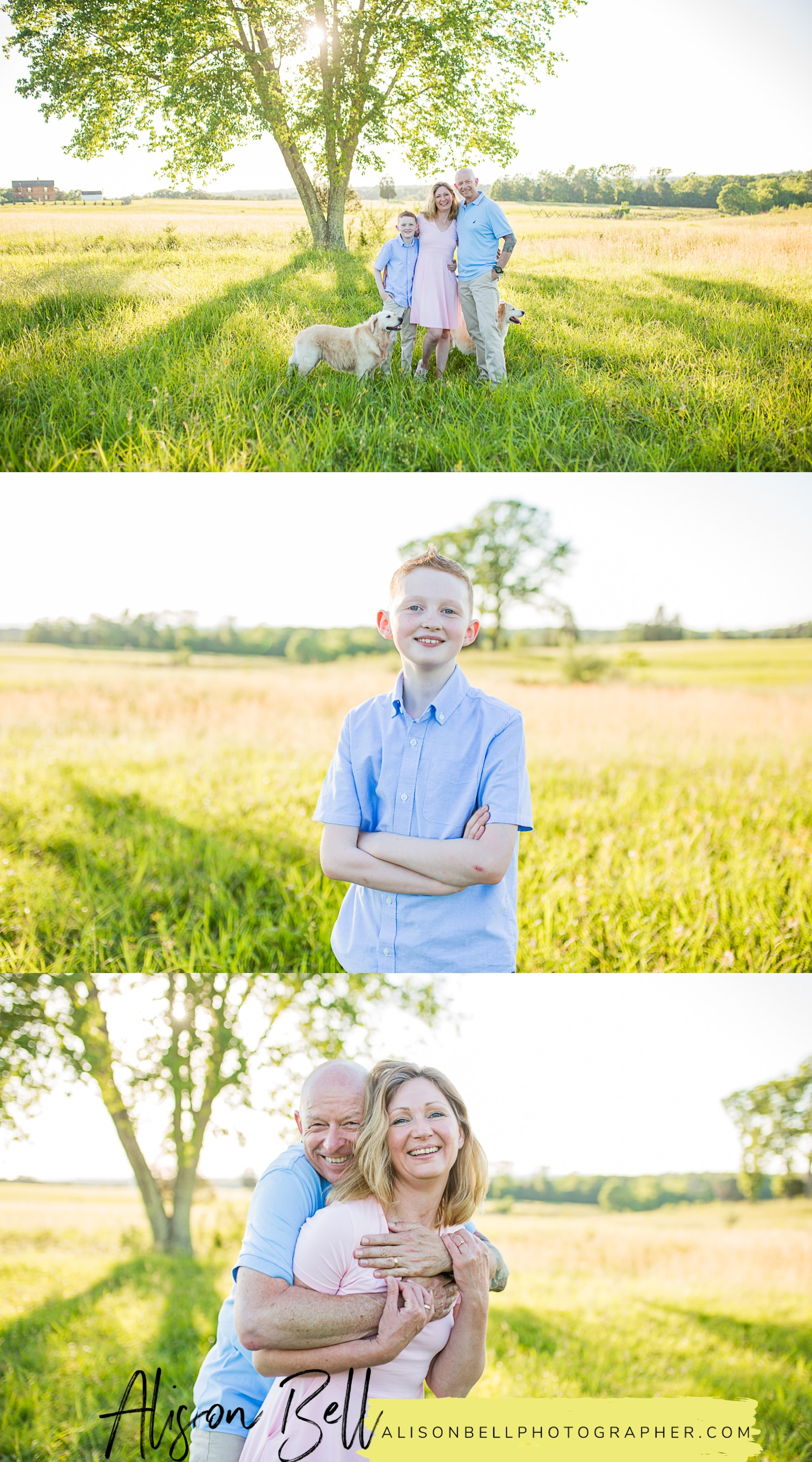 Family of 3, older child, 10 year old, with dogs at Manassas Battlefield in Virginia by Alison Bell, Photographer, alisonbellphotographer.com