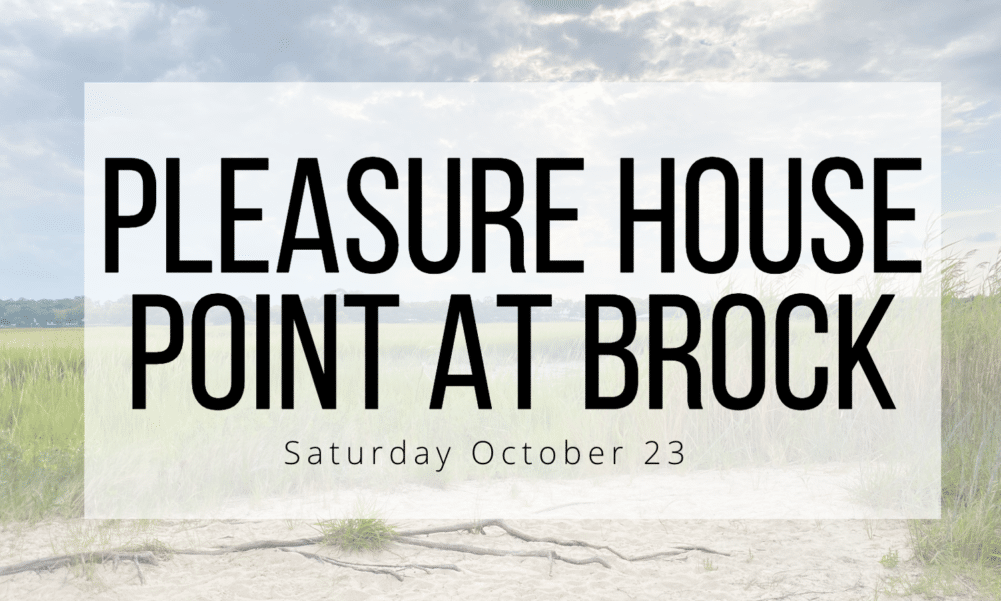 Virginia Beach mini photo sessions fall 2021 with alison bell photographer at pleasure house point natural area and brock environmental center